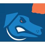 uoit varsity logo